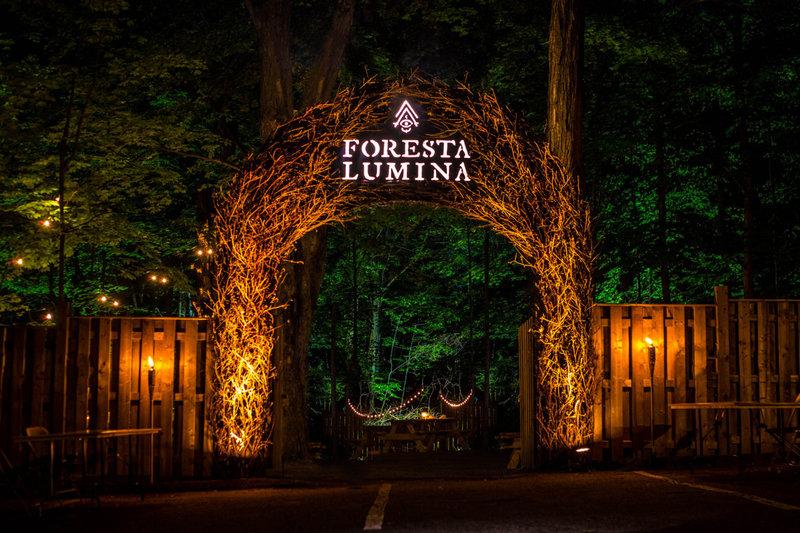 Entrada a Foresta Lumina