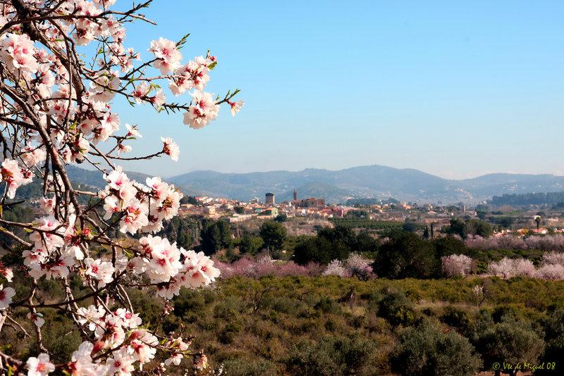 Alcalalí_Foto de Vicente de Miguel (Flickr)