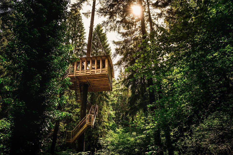 Cabañas en los árboles en Bizkaia
