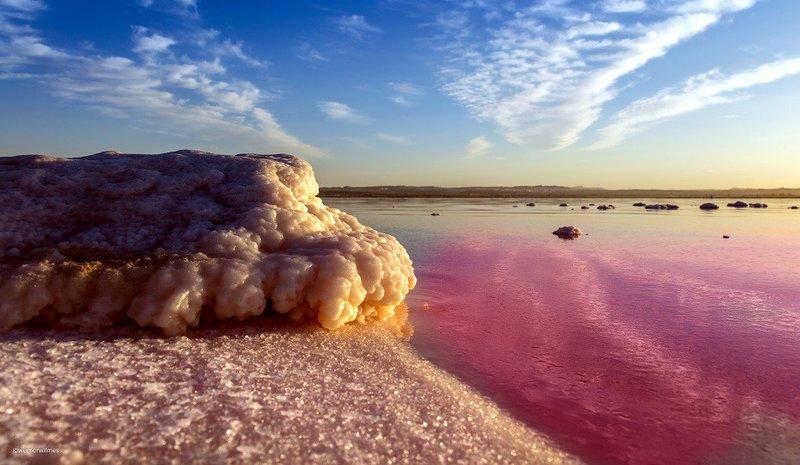 El Mar Muerto Valenciano en Supertribus