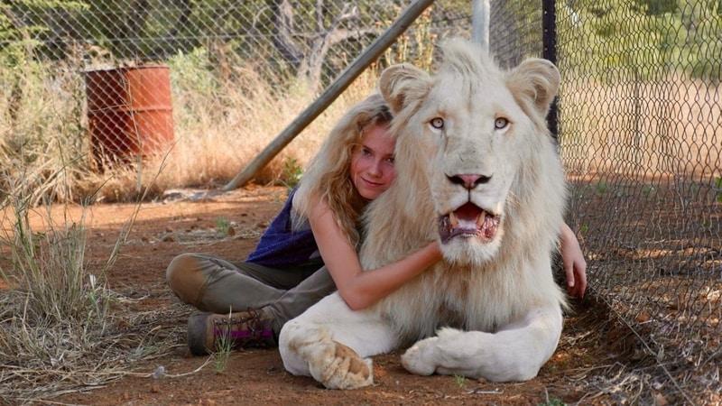 Mía y el león blanco estreno en cines